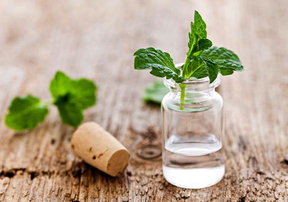 A borsmentaolaj fertőtlenítő és szárító hatású, érdemes egy kevés aloe verához vagy körömvirágkrémhez adnod pár cseppet, és finoman bekenni vele az érintett területet. Még mire jó a menta?