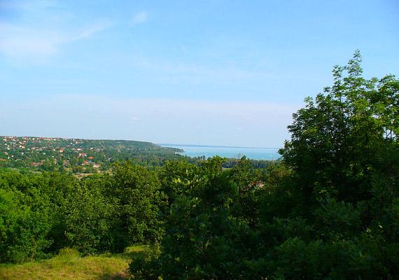 Balatonfűzfő a Balaton északkeleti csücskén, a Fűzfői-öböl partján fekvő kisváros - az egyik legtisztább levegőjű magyar város.