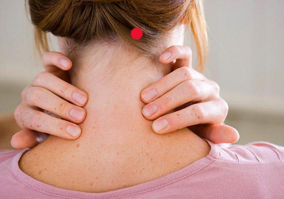 A nyakszirt alsó szegélyén, a nyakizom kiinduló pontjánál találod az Eh-20-as pontot. Stimulálása erősíti az immunrendszert, görcsoldó hatású, csillapítja a köhögést.