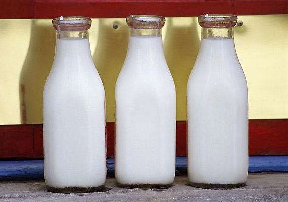 Bár a legtöbb tejtermék savasítja a szervezetedet, a kecsketej kivétel.
