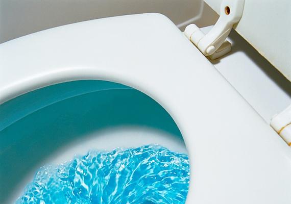 A koszos WC-ülőke is igazi baktériumforrás, tehát idegen helyen lehetőleg ne ülj rá.