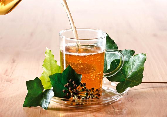 A borostyán - Hedera helix - erejét nemcsak egyszerű köhögés, de akár hörghurut esetén is bevetheted. Antibakteriális, köhögés- és gyulladáscsökkentő, köptető, nyákoldó és enyhe görcsoldó hatással is bír. Kapható szirup formájában is, de teát is főzhetsz belőle: egy teáskanál szárított levelet forrázz le három deci vízzel, majd hagyd állni tíz percig. Naponta három csészével fogyassz belőle.