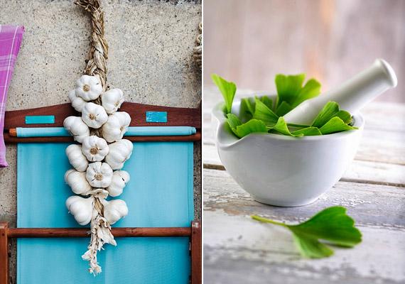 A keringési rendszer problémáit - melyek szintén állhatnak a lábgörcs hátterében - javíthatod olyan gyógynövényekkel, mint a fokhagyma vagy a ginkgo biloba.