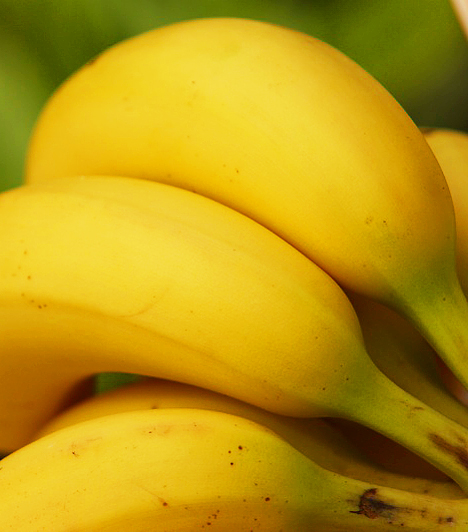 Banán  Elsősorban a zöldségek rendelkeznek erős lúgosító hatással, ám a gyümölcsök között is akad néhány, mely segíthet a sav-bázis egyensúly helyreállításában. Ilyen például a banán.