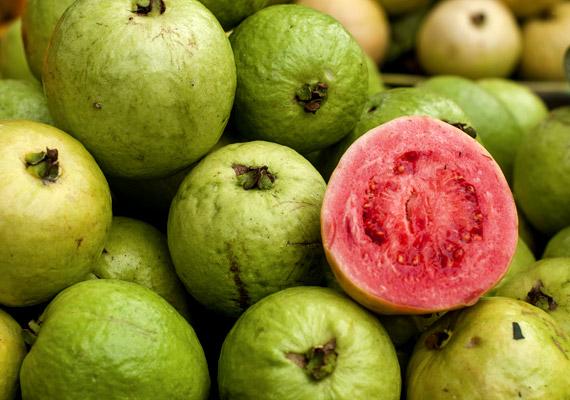 A guajava egy hazánkban kevéssé ismert, de nagyobb zöldségboltokban kapható növény, melynek 100 grammja körülbelül 230 milligramm C-vitamint tartalmaz. Vásárláskor érdemes a zöldessárga, még nem teljesen puha gyümölcsöt választani. Az érettet pedig tartsd hűtőszekrényben.