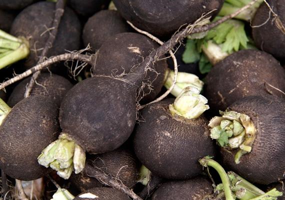 A fekete retek igazi vitaminbomba, ráadásul káliumot tartalmaz, ami segít a vízháztartás helyreállításában. A gumójában találhatómustárglikozidok az emésztést, a belek és a gyomor mozgását serkentik, felélesztik az anyagcserét. Nyersen fogyaszd! A zöldségről itt olvashatsz bővebben.