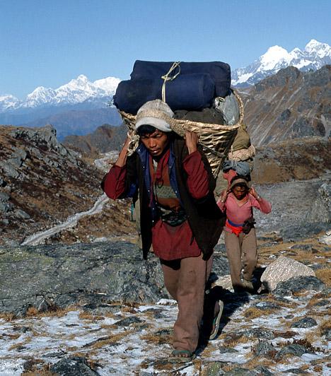 Nepáli serpák  A Himalája meredek lejtőinek lakói rendkívüli fizikai állóképességükről híresek. Kiváló egészségük és hosszú életük titka, hogy húst alig fogyasztanak - étrendjük közel áll a vegetáriánusokéhoz -, és a buddhizmus szigorú formáját követik. Emellett a rendszeres fizikai munka és a Himalája tiszta levegője is nagyban hozzájárul, hogy a nepáli serpák igen hosszú életkort érnek meg.