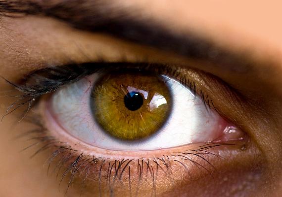 Sasszeművé teszA sütőtökben lévő béta-karotinból a szervezeted A-vitamint állít elő. Ez a vitamin segít megőrizni látásod épségét, mi több, visszafordítja a retinafunkciók hanyatlását, és egyes degeneratív szembetegségek is megelőzhetőek vele. Ne feledd, ugyancsak az A-vitamin felel a szép, ragyogó arcbőrért!