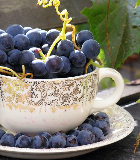 Szőlő A kék szőlő flavonoidok, többek között quercitin és resveratrol biztos forrása. Ezek az anyagok csökkentik a szívbetegségek kialakulásának kockázatát azzal, hogy megakadályozzák a vérrögök és a vérerek falán a lerakódások képződését, valamint megvédik az LDL-koleszterint a szabadgyökök károsító hatásától.Kapcsolódó cikk:Rákellenes, szívvédő, gyulladáscsökkentő »