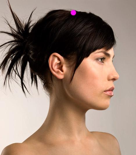 Elülső koponyatető  Az Elülső koponyatető nevű pont a fej középtengelye, valamint a fülcimpáidat a fej tetején át haladva összekötő vonal találkozásához képest három ujjszélességgel előbbre helyezkedik el. A pont három-öt percig történő enyhe nyomása oldja a szorongásos tüneteket.