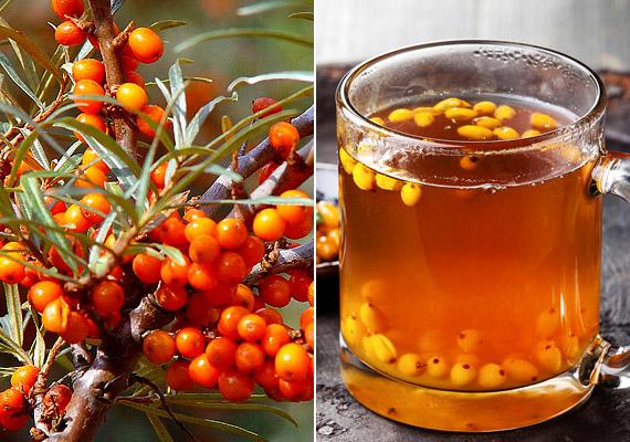 100 gramm homoktövisben körülbelül 7-900 milligramm C-vitamin van. Ez a mennyiség nagyjából 20-szorosa a narancsban fellelhetőnek. Fogyaszthatod gyümölcsital, tinktúra vagy tea formájában is. Nézd meg, hogyan!