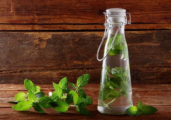 A borsmenta illóolaj-tartalmának köszönhetően kitisztítja a légutakat, segít elűzni a megfázást és az influenzát. Nyugtató, gyulladáscsökkentő hatása miatt is érdemes fogyasztanod a gyógynövényből készült teát, a borsmentaolajat pedig párologtasd a szobában. Tudj meg többet a borsmentáról!