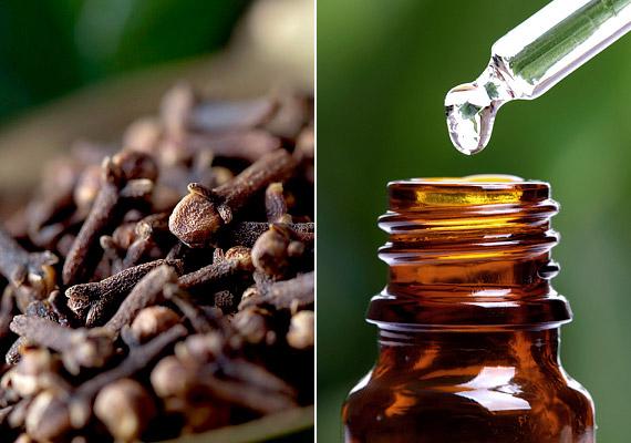 A szegfűszeg szárított bimbói cserzőanyagokat és sok illóolajat tartalmaznak. A szegfűszegolaj főként baktérium- és vírusölő eugenolból áll, amelynek kissé maró hatása is van. Adhatod süteményekhez, forralt borhoz, de akár inhalálhatsz vagy gargalizálhatsz is a növény olajával. Tudd meg, még mire használhatod!