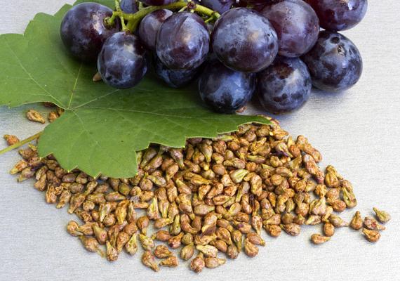 Ahogy arról korábban is beszámoltunk, a kék, illetve piros szőlő héjában és magjában olyan antioxidáns vegyületet mutattak ki, mely jóval erősebb még az E-vitaminnál és a C-vitaminnál is, utóbbinál például legalább hússzor. Mindezek miatt is érdemes naponta szőlőmagkivonatot fogyasztanod, de más pozitívumai is vannak, kattints ide, ha kíváncsi vagy, pontosan mik ezek.