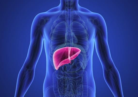 A K-vitaminból 0,1 milligrammnál többet nem szabad bevinni, mert károsíthatja a májat. Az ajánlott mennyiség 0,0005-0,001 milligramm/kilogramm naponta.