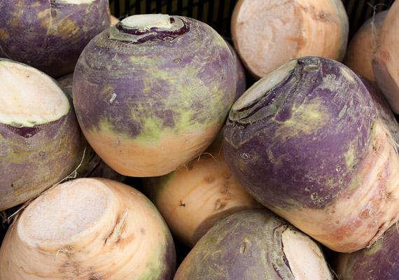 Mint egy bevert, lilás árnyalatban pompázó kobak. A karórépa tömör állaga árulkodik a zöldség magas rosttartalmáról, de nem csak emiatt érdemes fogyasztanod, kiváló forrása a C-vitaminnak, káliumnak, mangánnak. Pörköltek, különböző húsfélék mellé kiváló krumplihelyettesítő.