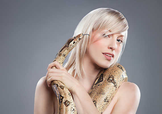 A kígyó gyakran ármányra, árulásra utal, főleg, ha sok van belőle. De betegséget követően a gyógyulás jele is lehet.