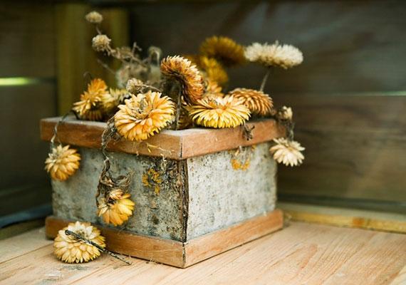 Az élő virágok a növekedést szimbolizálják. A haldokló virágok viszont problémákat okozhatnak.