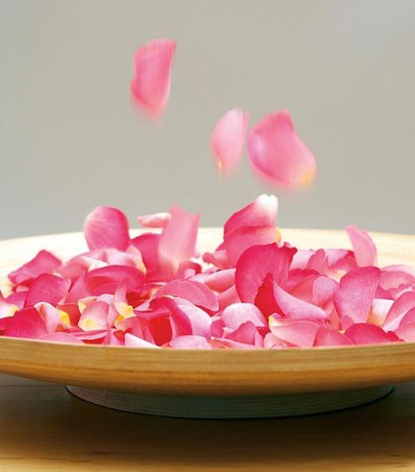 Rózsa  A rózsa nem véletlenül az egyik legkedveltebb szerelmi ajándék. A szépség és a tartós szerelem virága, melynek a kapcsolat megerősítésében van szerepe, de vágyserkentőként is használják.  Kapcsolódó cikk: Szerencse? Szerelem? Pénz? Segíthetnek bevonzani a kristályok »