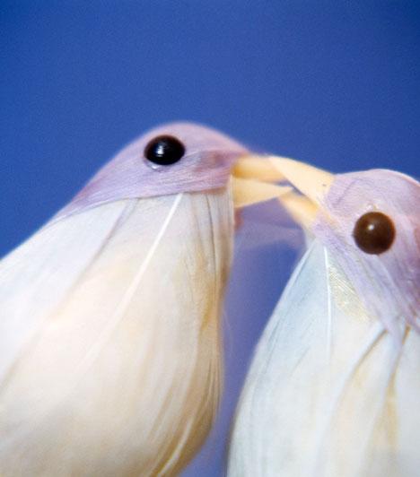 MadárpárA madarak, elsősorban a gerlék évszázadok óta az idilli szerelem megtestesítői. Díszítsd a szerelemsarkot az őket ábrázoló képpel vagy szoborral.