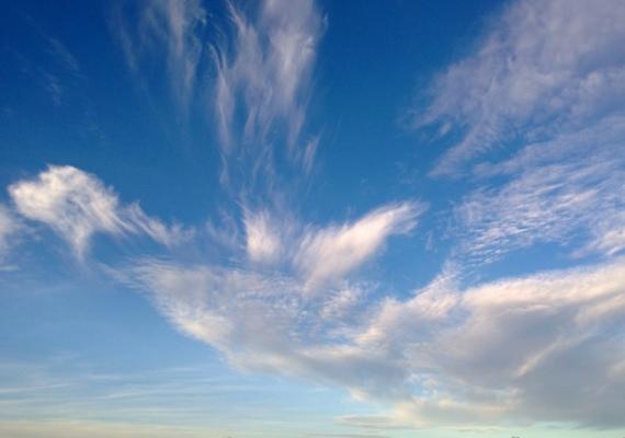 Mint egy suhanó angyal - gondolhatta a készítő. A képet Amerikában, Las Cruces közelében készítette egy pár.