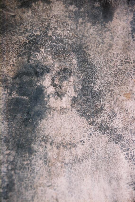 Kiderült, hogy a konyhapadló alatt méterekkel réges-régi koporsók nyugodtak, melyek közt még a 13. századból valót is találtak. A testek exhumálása után újra eltemették azokat, a konyha padlóját pedig ismét rendbe hozták. Röviddel ezután újabb arcok jelentek meg, de most már tömegével.
