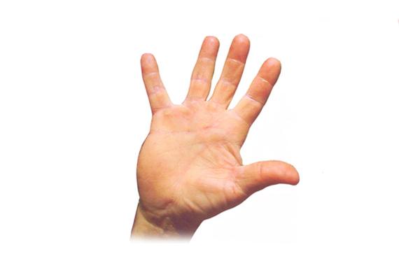Tenyere hosszú, ujjai pedig rövidek? A férfi intuitív. Ösztönei vezérlik a mindennapokban, így a szerelemben is. Nem gondolja túl a dolgokat, csupán a belső hangra hallgat, melyet megérzései diktálnak.