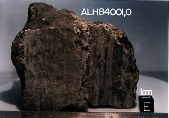 Bioszféra a Marson? Az (ALH) 84001 nevű, Marsról származó meteorit nagyjából 13 ezer évvel ezelőtt csapódott az Antarktisz jegébe. A kutatók élet nyomait találták rajta baktériumok és más mikroorganizmusok fosszíliáinak formájában.