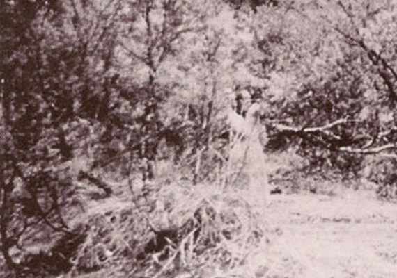 Alice Springs közelében, Ausztráliában készítették ezt a fotót 1959-ben, melyen egy valamelyest áttetsző nőalak tűnik ki az erdei környezetben. Bár mai szemmel nézve az ember mondhatná, hogy ezt a képet a Photoshop segítségével hamisították, az ötvenes évek végén ilyen képszerkesztő eszköz még nem létezett.