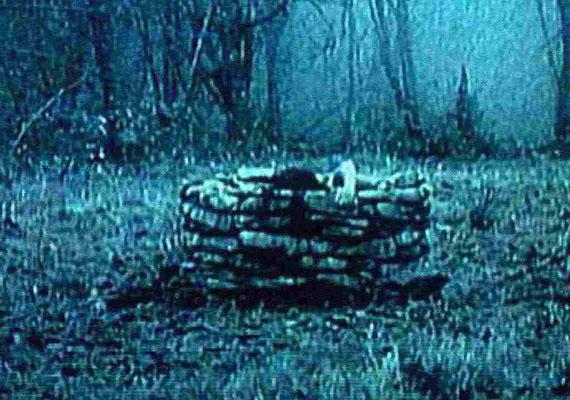 Hollywood felfedezte és leporolta a japán horrorfilmeket az ezredfordulón: A kör 2002-ben készült amerikai változata egy 1988-as japán film feldolgozása. A mozi története egy természetfeletti erőkkel bíró, veszélyes videokazetta körül bonyolódik, egyre több holttesttel.