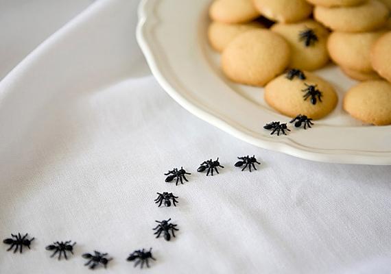 Eső előtt megjelennek a hangyák is.