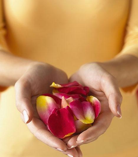 NagylelkűségA nagylelkűség gyakorlása elengedhetetlen a karma megtisztításához. Ez nemcsak anyagi adakozást jelent, hanem azt is, hogy energiádba és idődbe is belefér az, hogy mások hasznára legyél.
