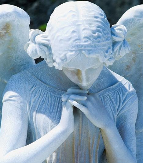 Angyal                         Ha angyal látogat meg álmodban, ez azt jelzi, hogy készen állsz a szerelemre. Viszont ha az angyal csak elsuhan a hajlékod előtt, talán nem vállalod a felelősséget a sorsodért.                         Kapcsolódó cikk:                         Közelgő sorsfordulatot jelző álomképek »