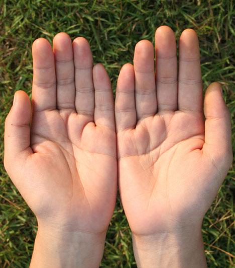 Bika  Ha létezik erotikus kézfej a földön, akkor az a Bikáé. Nem kizárt, hogy vonzódsz a kézműves tevékenységekhez is, mindenesetre bizonyosan szívesen fogják meg a kezed az ellenkező nem tagjai.  Kapcsolódó cikk: Mennyire gondolja komolyan a pasi? »