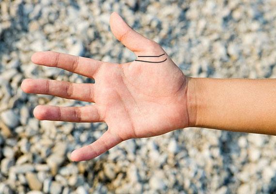 A hüvelykujj körül található családgyűrűk erős családi köteléket jeleznek, aminek a férfi életében végig fontos szerep jut. Valószínűleg biztos és szerető hátteret teremt partnere és gyermekei számára is.