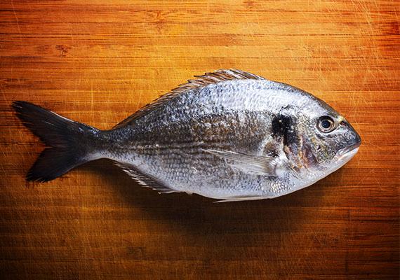 Ha álmodban halat kapsz ajándékba, vagy kifogsz egyet, azt jelenti, megvastagszik a pénztárcád.
