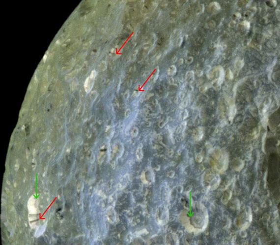 Kráterek a Mimason.