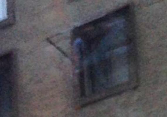 A Los Angeles-i Cecil Hotelban ez év januárjában fotóztak egy szellemnek feltételezett alakot, amint kihajol az ablakon. A szellem állítólag egy sorozatgyilkosé, aki valaha ott szállt meg egy időre.