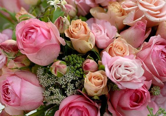 A rózsa hagyományosan a szerelem virága.
