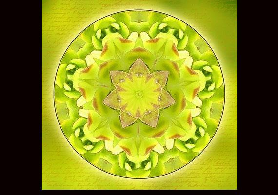 A zöld szín az új kapcsolatok kialakításában is segít.
