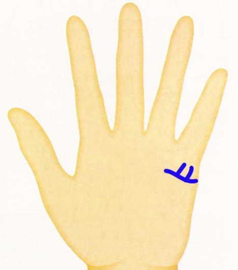Gyerekvonalak A tenyereden látható gyerekvonalak születendő gyermekeid felső számát mutatják. Ha tehát nyolc gyermek érkezését jelzi a kezed, nem jelenti azt, hogy mind a nyolcan megszületnek majd. Az ábrán látható függőleges vonalak két gyermek érkezését mutatják.Kapcsolódó cikkek:Hány gyereked lesz? - Olvasd ki a tenyeredből! »