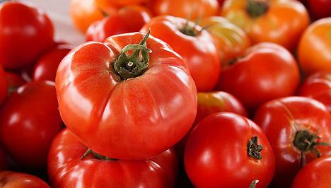 Fogyókúrás ételek | Zsírégető finomságok (1.)
