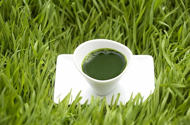 méregteleníteni az élő zöld életet)
