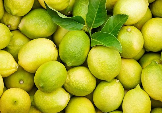 Erősíti a gyomrot, serkenti az emésztést, égeti a zsírt és csökkenti a puffadást a citrom.