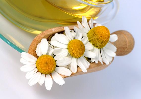 Felfújódás ellen az olyan gyógynövényekből készült teák a legjobbak, mint a koriander, a borsmenta, a kamilla és az édeskömény.