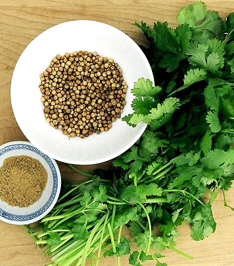 Koriander  A koriandert már az ókori görögök is emésztésjavító, salaktalanító gyógynövényként tartották számon. Illóolajai nyugató, vízhajtó, puffadásgátló hatásúak, segítik az emésztőnedvek termelődését, ráadásul egy tanulmány szerint a koriander olyan erősen méregtelenítő hatású, hogy még a szervezetben lerakódott higany kimosására is képes.