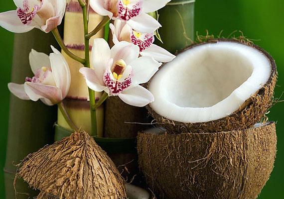 A kókuszban található transzzsírok elengedhetetlenek a megfelelő anyagcseréhez, emellett ez a gyümölcs rostokban is gazdag.