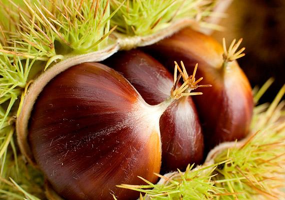 A gesztenyének kiemelkedően magas az élelmirost-tartalma - nem csak sütve vagy pürésítve finom, köretként az egyszerű húsételeknek is ünnepi jelleget ad.