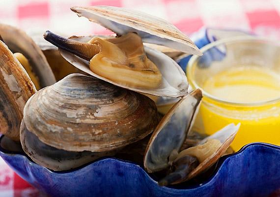 A tenger gyümölcsei - különösen a kagyló - szintén gazdag cinkforrások: 100 g kagyló 21 mg-ot tartalmaz.