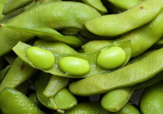 A szója a vegetáriánus konyha elmaradhatatlan alkotóeleme. Nemcsak glikémiás indexe alacsony, de fitoösztrogének gazdag forrása is. A belőle készült ételek - szójatej, valamint a miszo - gátolják a csontritkulást, valamint csökkentik a koleszterinszintet.